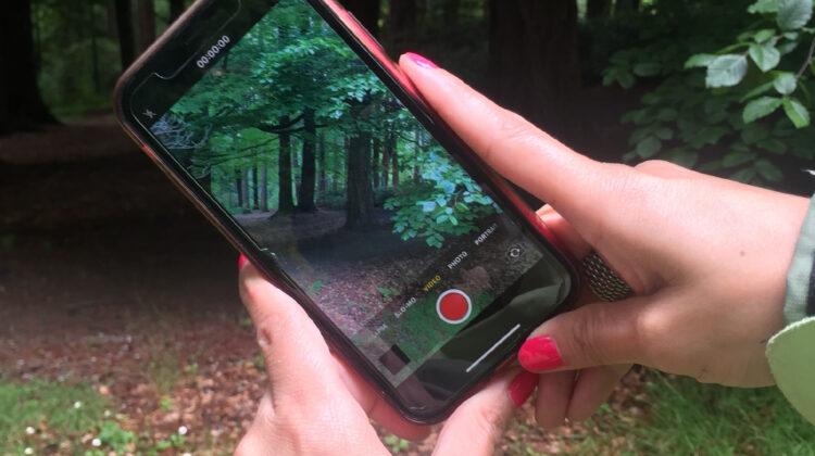 Eco Stories web