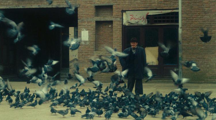 Kiarostami Kids Web4