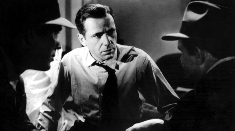 The Maltese Falcon web4